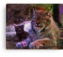 Two Lynx Canvas Print