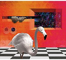 THE RED PORTAL with ALBINO BIRD Photographic Print