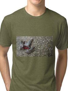Flying Rat Bird Without Head n°4 Tri-blend T-Shirt