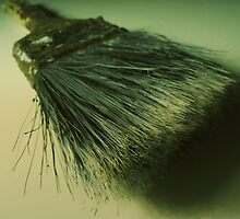 Old Brush by Maris Stanley