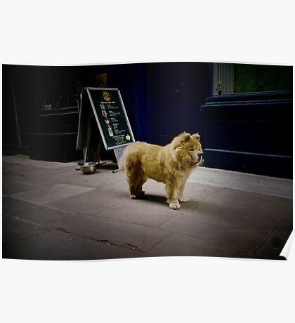 Soho,London(lomo-lca)  Poster