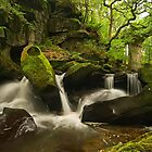 Fairies Chapel, Healey Dell by Steve  Liptrot
