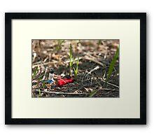 Grass Cutter Framed Print