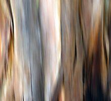 Eucalyptus #4 by Kitsmumma