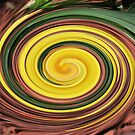 Hibiscus Swirl by MichelleR