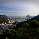 O Cristo Redentor, Rio De Janeiro, Brasil by Craig Scarr