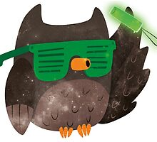Just Don't Give A Hoot! by Claire Stamper
