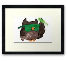 Just Don't Give A Hoot! Framed Print