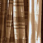 Sepia Throws by Karen Martin IPA