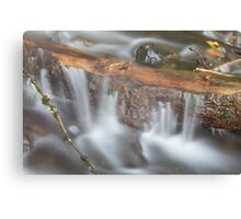 Below Horsetail Falls Canvas Print