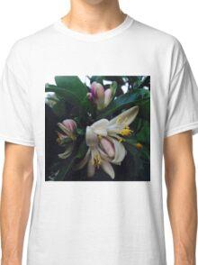 Lemon Blossoms Classic T-Shirt