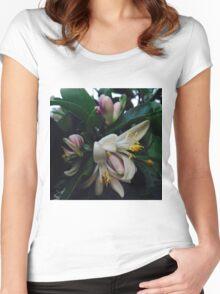 Lemon Blossoms Women's Fitted Scoop T-Shirt