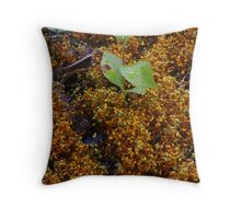 Moss Waterfall Throw Pillow