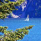 Buttonhook Bay Sailboat by Tamara Valjean
