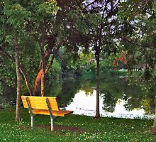 Bench on the Lake by Wendy Mogul