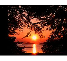 Sunrise Mountain Photographic Print