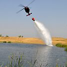 Bambi Bucket by Richard Stephan Bergquist