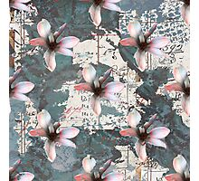 Pink and Grey floral Photographic Print