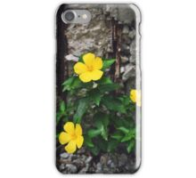 Nature's Reclamation iPhone Case/Skin
