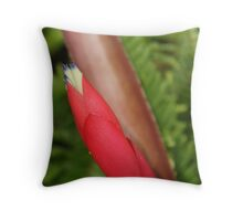 Up Close & Personal Throw Pillow