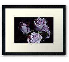 Lavender Rose Bouquet Framed Print