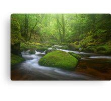 Grobbach Mist Canvas Print