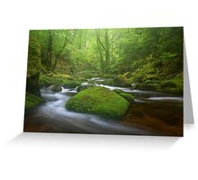 Grobbach Mist Greeting Card