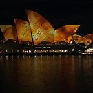 The Colours of Sydney (29) by Scott Westlake
