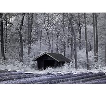 Hut in infrared Photographic Print