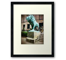 Lion in Chicago Framed Print