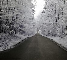 Way in infrared by Zosimus