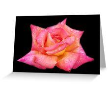 Peace on Black Velvet Greeting Card