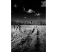 Road Less Travelled Photographic Print