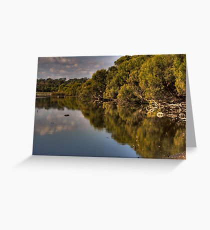 Nature Reflects Nature.... Greeting Card