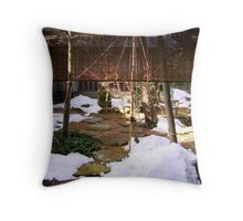 A Cold Loveliness Throw Pillow