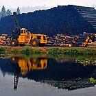 Big Wood by Richard Stephan Bergquist