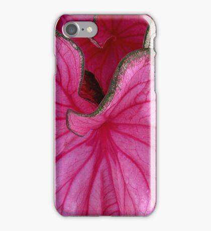 Rosebud Caladium iPhone Case/Skin