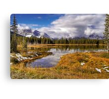 Vermilion Lake and Forest Canvas Print