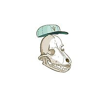 Hometown Dog Skull by skulldaggery