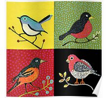 American Birds Poster