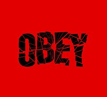 Obey cracked shattered glass text destroyed by dopebubble