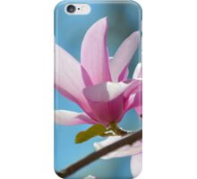Magnolia × Soulangeana - Saucer Magnolia | Center Moriches, New York iPhone Case/Skin