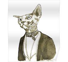 Mr. Sphinx Poster