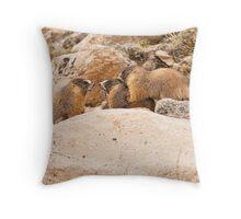 Rock 'em Sock 'em Marmots Throw Pillow