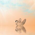 Swan Swim by Kimberly Palmer