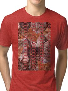 Cats and Cats and Tri-blend T-Shirt