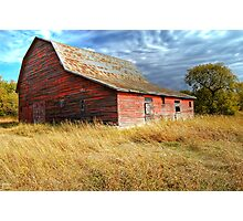 Alone in the Prairie Photographic Print
