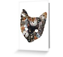 Cat Cat Greeting Card