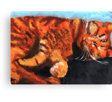 CAT CAT CAT (2) Canvas Print