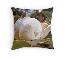 Magnolia Grandiflora in all it's glory Throw Pillow